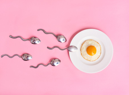 How to Optimize Your Fertility Health - by Registered Dietician Naomi O'Connor
