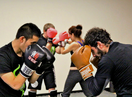 SHN Kickboxing Academy Online:  Episode 2: Neutral, Defensive, Offensive Stance
