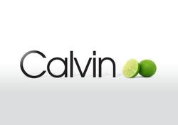 calvin lime.jpeg