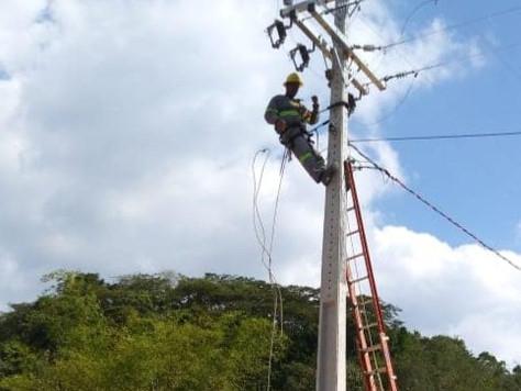 CERCI realiza obras de melhoria na rede elétrica.