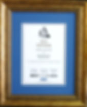 Ornate gold award frame witha blue mounting.