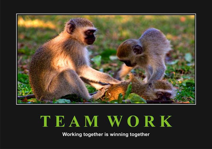 Team Work 2.jpg