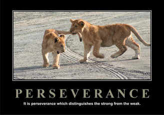 Perserverance.jpg
