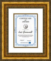 Corporate certificate framed. Ornate gold frame
