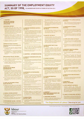 Summary if the employment equity act poster