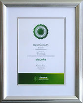 Silver Award frame with white and silver mount.