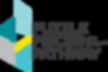 PP2P_logo3_color.png