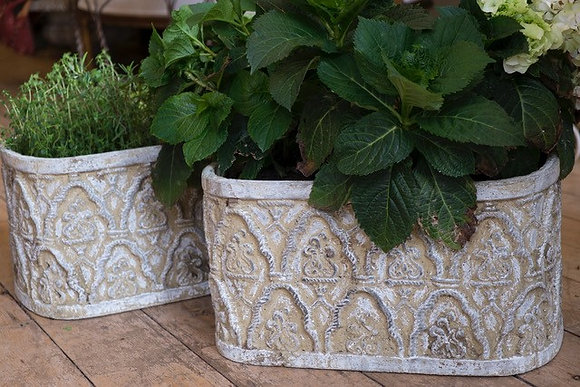 Pair of Attractive Concrete Planters