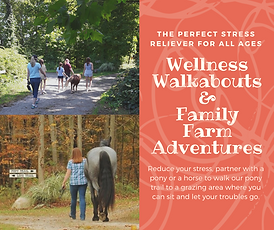 Wellness Walkabouts and Family Farm Adve