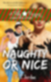 Naughty or Nice update eBook.jpg
