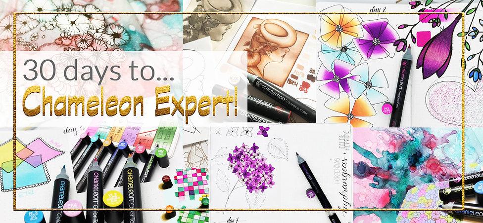 30 days to chameleon expert banner.jpg