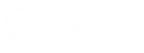 Logo Small White Outline copy.png