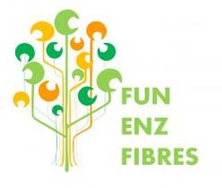 FunEnzFibres.jpg