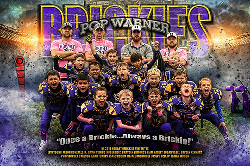Hobart Tiny Mites Team Poster 2018 12x18 2 for $55.00