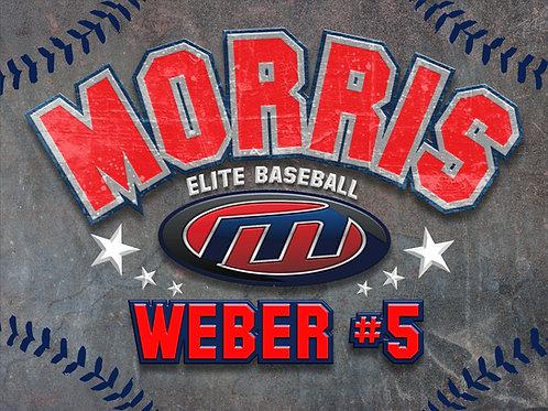 Morris Elite Baseball Yard Sign 18x24 Single Sided