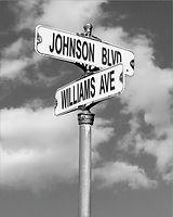 JOHNSON-WILLIAMS SAMPLE.jpg