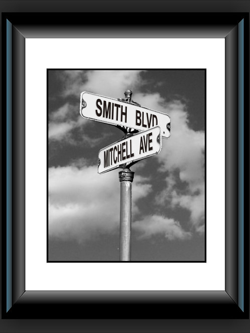 Street Signs of Life Framed (Shipped)