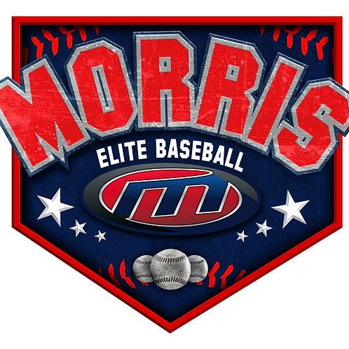 Morris Elite Baseball Car Window Decal No Name