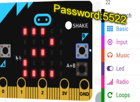 Microbit Password
