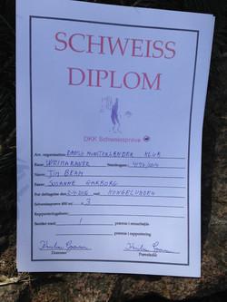 Otto got his Schweiss-diplome