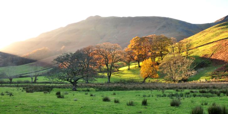 Borrowdale, Cumbria
