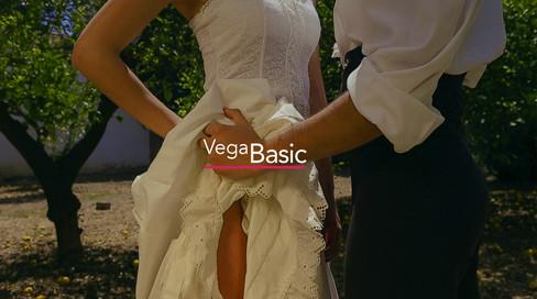 Vega Basic