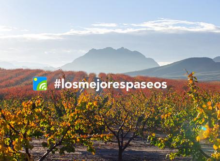 Lanzamos la campaña #losmejorespaseos