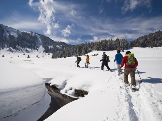Schneeschuhwandern im Fichtelgebirge