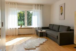 Zimmer mit Schlafcouch (2 Personen) & Schreibtisch II