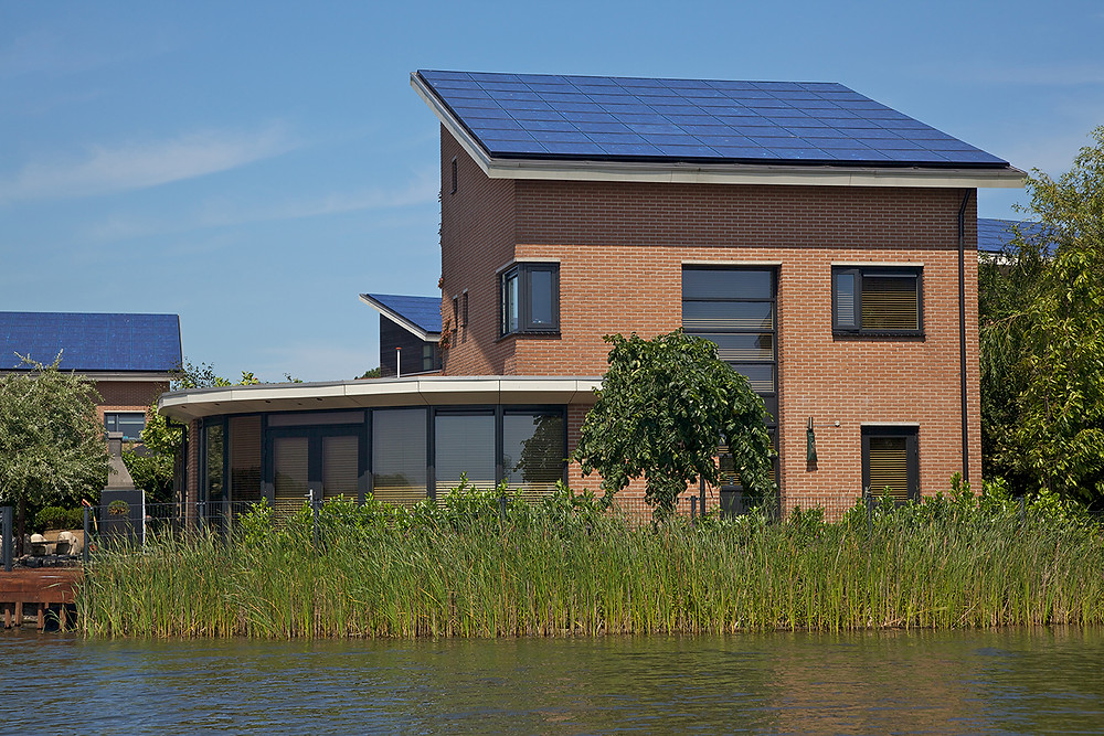 Mistakes to Avoid with Eco-Friendly Homes