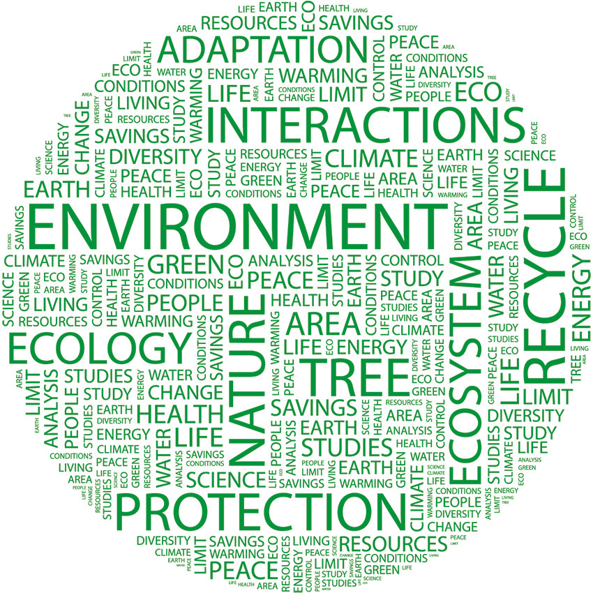 Green Building and Eco-Friendly Terms