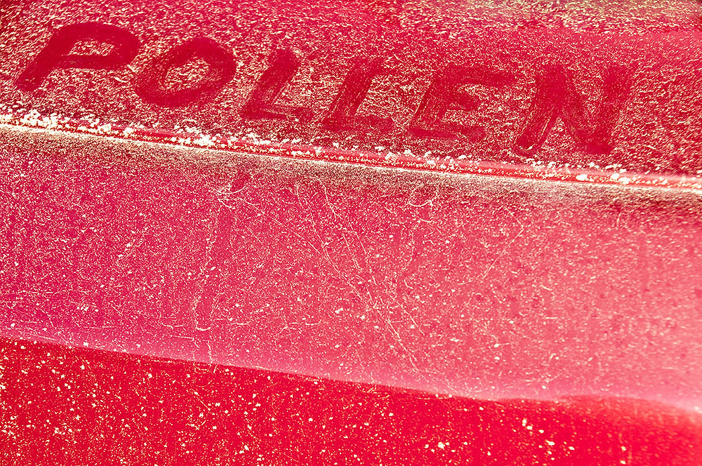 uto shop tips to remove pollen from car finish