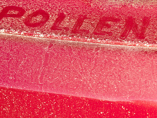 Advice from the Auto Shop​: How to Protect Your Paint from Pollen Damage