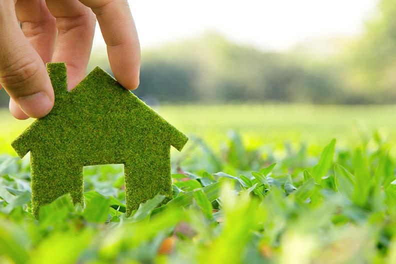 Saving Green on Eco-Friendly Homes
