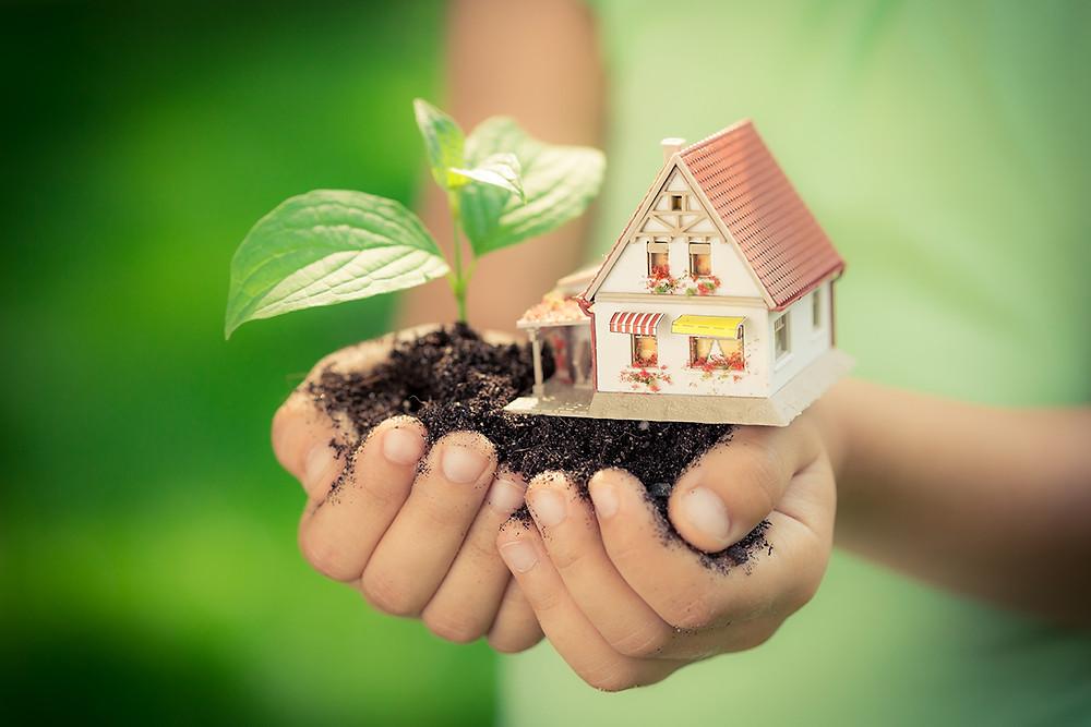 tiny eco friendly home