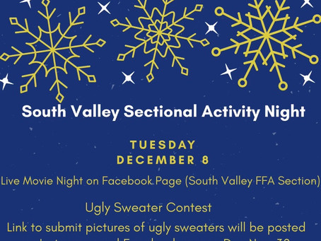 South Valley Sectional Activity