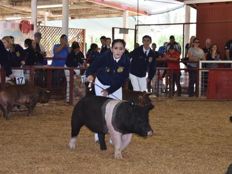 Livestock Applications + Parent Meeting