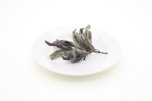 OISO PAPPERMINT TEA