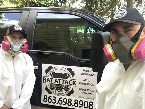 RAT ATTACK SERVICES - RODENTS AND INSULA