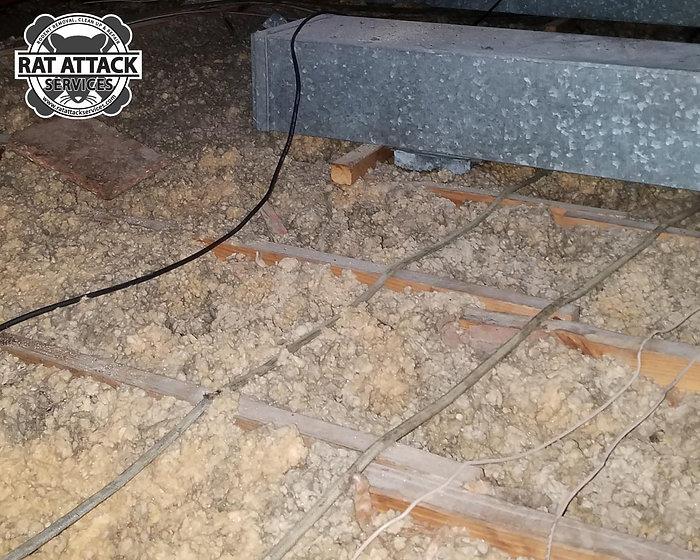 Low-attic-insulation---5.jpg