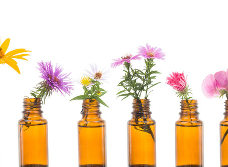 How flowers can help alleviate PTSD