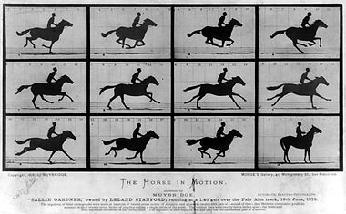 1024px-The_Horse_in_Motion.jpg