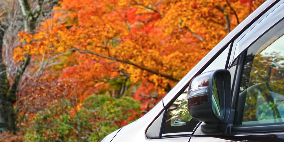 秋の風を感じるドライブ!
