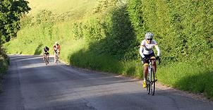 Chalton hilly 3 2.jpg