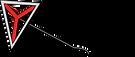 Y Camp Logo.png