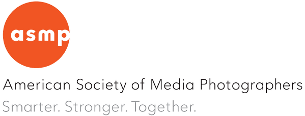american society of media photographers logo