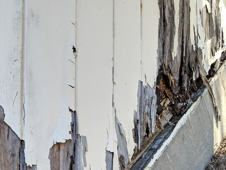 The new released epoxy products for helping your rotted wood treatment!