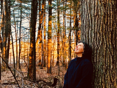 Winter Newsletter: Sun Rising Reiki receives 2019 Best of Amherst Award!