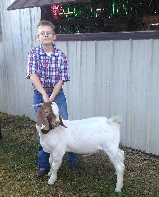 2013 Champion Market Goat Eau Claire