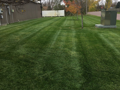 mowing stripes.jpg